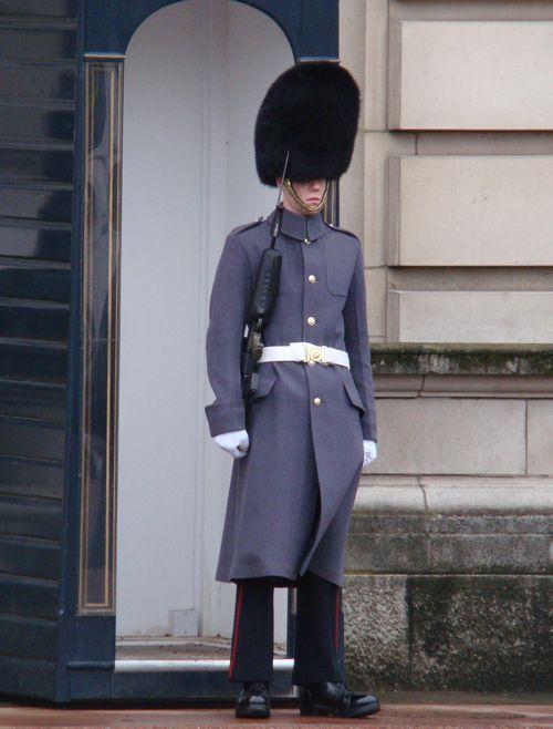 Buck Guard