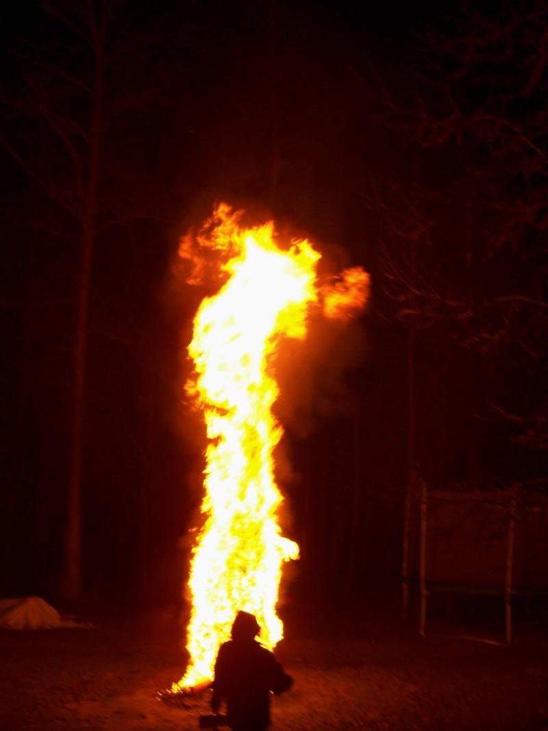 Tree_fire_2007